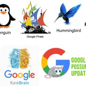 Everything About Google Algorithm Updates You Should Know!